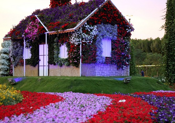 Colourful Dubai Miracle Garden