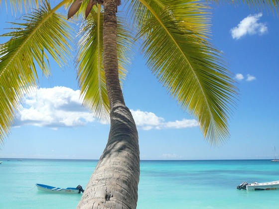 Take advantage of Caribbean travel package deals