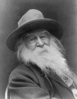 A black and white picture of Walt Whitman.
