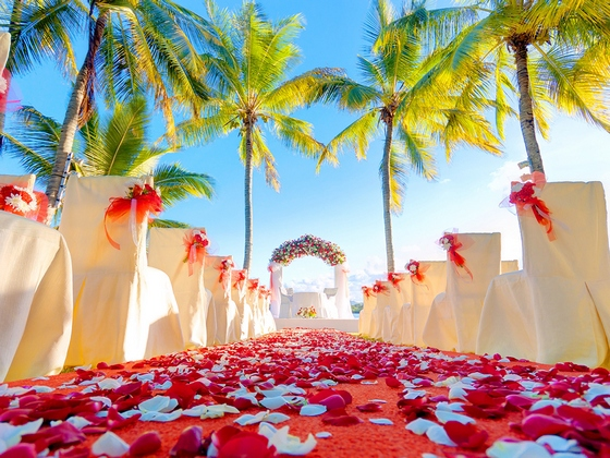 Colourful wedding set up in tropics