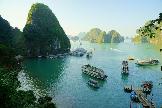 A busy Vietnam sea scene with many boats and lush islands